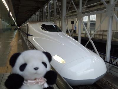 panda shinkansen.jpg